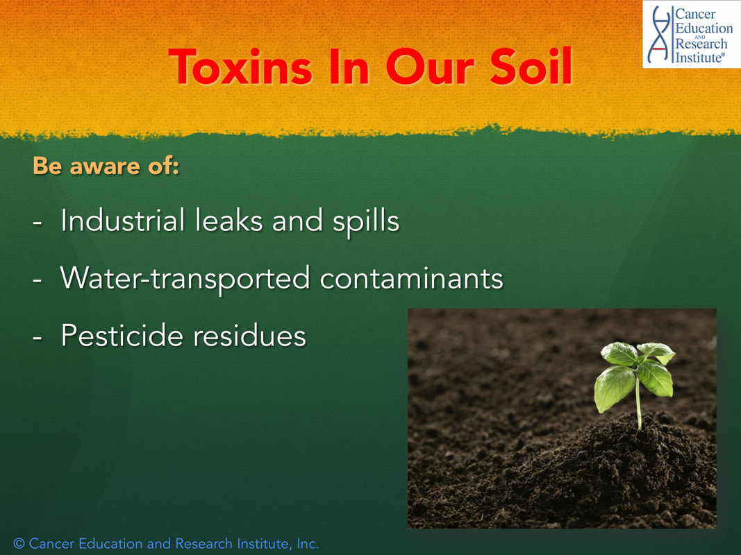 Toxins in our environment - Cancer Education and Research Institute (CERI)